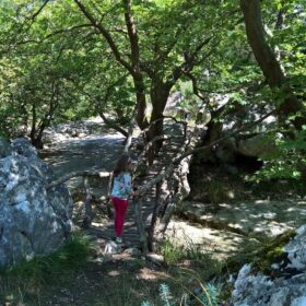 arcadia hiking menalon with kids