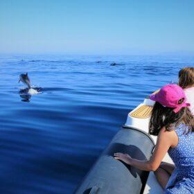 kids beach boat corinthia dolphins