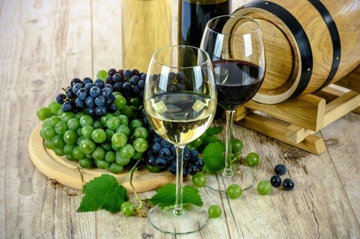 Kalamata wine tasting