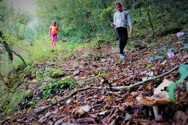 experiences for kids peloponnese